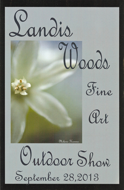 Landis Woods 1